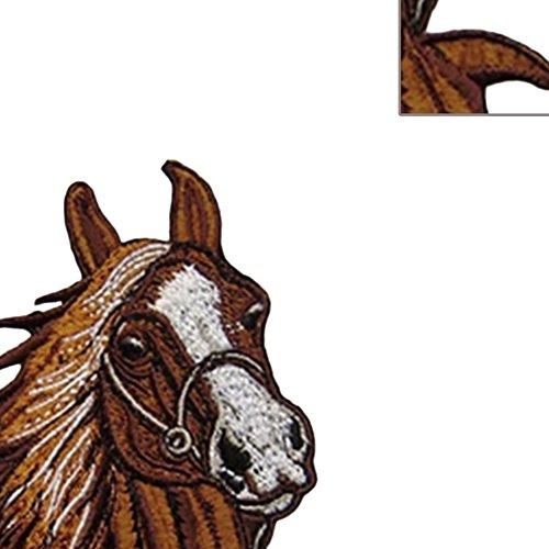 DaoRier Animal Patch Stickers para Decoraci/ón Cabeza de Caballo Parches Ropa Termoadhesivos para la Camiseta Jeans Vestidos Bolsas 1PCS Size 9/×10cm