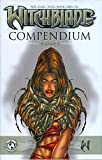 img - for Witchblade Compendium, Vol. 1 (v. 1) book / textbook / text book
