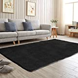 Aicehome Area Rug,Soft Bedroom Rug,Fluffy Thicken Anti-slip Bottom for Home...