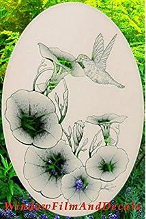 Amazoncom Lily  Hummingbirds Oval Etched Window Decal Vinyl - Window alert hummingbird decals amazon