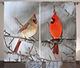Cheap Lunarable Bird Curtains, Pair of Northern Cardinal Birds on a Tree Ornithology Avian Wildlife Fauna, Living Room Bedroom Window Drapes 2 Panel Set, 108 W X 84 L Inches, Vermilion Tan Beige