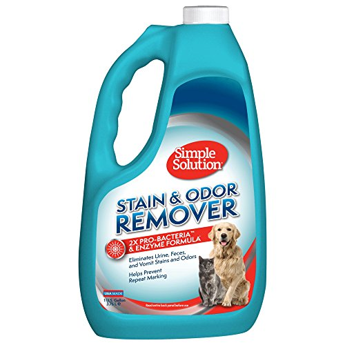 Simple Solution Pet Stain and Odor Remover | Enzymatic Cleaner with 2X Pro-Bacteria Cleaning Power | 1 Gallon (Best Carpet Stain And Odor Remover)