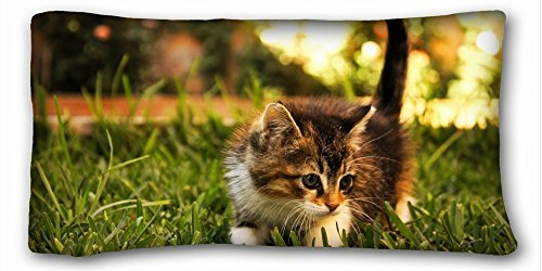 Decorative King Pillow Case Animals kitten grass researcher 20