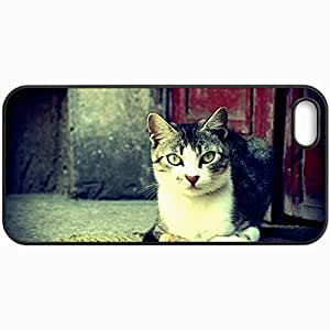 Fashion Unique Design Protective Cellphone Back Cover Case For iPhone 5 5S Case Cat Eyes Wool Nose Mustache Color Black by icecream design