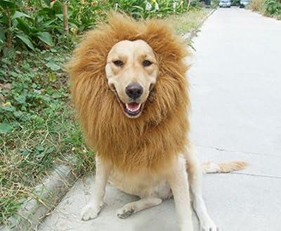Urparcel Pet Costume Lion Mane Wig for Dog Christmas Xmas Santa Halloween Clothes Festival Fancy Dress up (Light Brown, L)