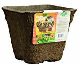Akro Mils FPP09090RBR 9 by 9-Inch Fiber Grow Patio Planter, Square