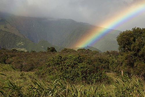 Hawaii Maui A rainbow over the lush Kaupo Gap Poster Print (19 x - Kaupo Gap