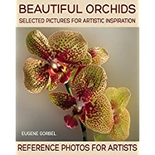 Beautiful orchids. Selected pictures for artistic inspiration: Reference Photos for Artists
