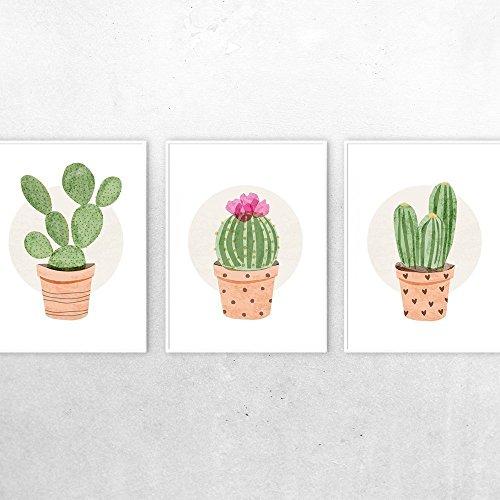 amazon com cactus wall art set of 3 succulent prints botanical