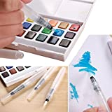 PREEMINENCE 3pcs Pilot Ink Pen for Water Brush Watercolor Calligraphy Painting Tool Set