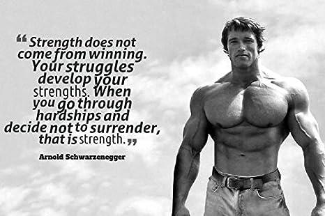 Amazon Com Arnold Schwarzenegger Motivational Quote Poster