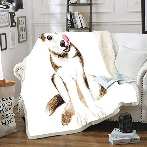 Musesh Christmas Warm Blankets 60X80 Inch Decorative Throw Blanket The Dog Breeds Husky Cute Puppy Multicolored Eyes Isolated White Background Fleece Light Blanket for Kids,Bed,Sofa (Jeremy Lights Christmas Brown)
