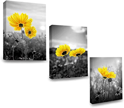 Sumgar Yellow And Grey Canvas Wall Art Flower Floral Prints Flowers Daisy Pictures Ochre Framed Artwork Plants Paintings For Bathroom Bedroom Kitchen Living Room Ornaments 30x40cm Set Of 3 Amazon Co Uk Kitchen