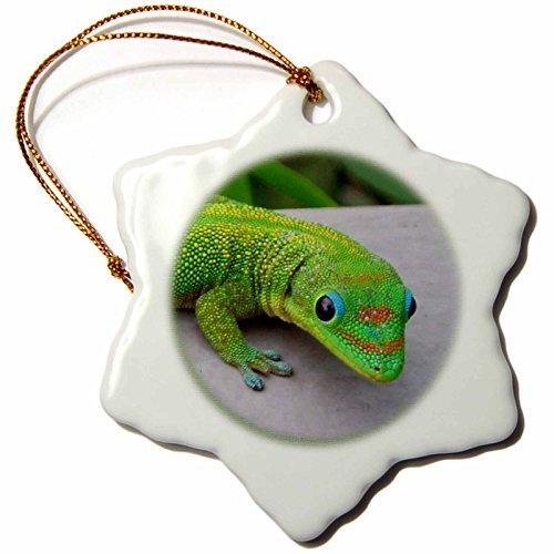 Christmas Ornament Gecko Cameo Porcelain Snowflake Ornament, ()