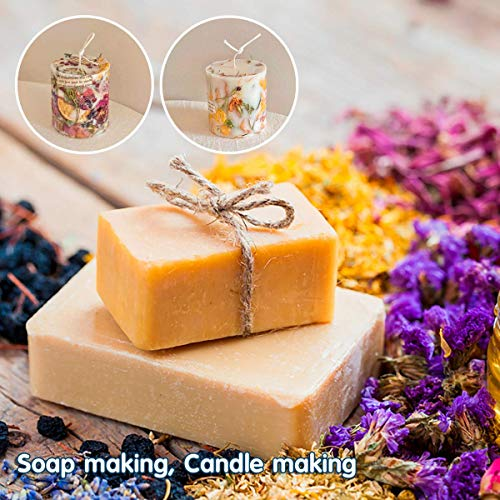 Miw Piw Natural Dried Flower- Gift Box – Floral Kit for Soap, Candle, Resin Jewelry Making, Bath, Nail, Decoration…