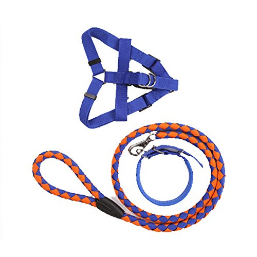 [Pet Dog Leash Lead Rope Collar Harness Sets Nylon Puppy Control String] (Handmade Candy Costumes)
