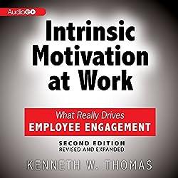Intrinsic Motivation at Work