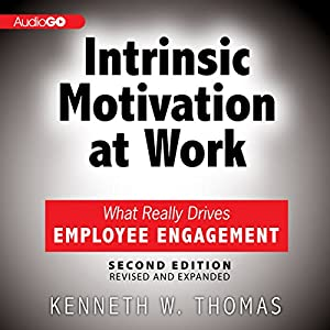 Intrinsic Motivation at Work Audiobook