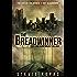 The Breadwinner (The Breadwinner Trilogy Book 1)
