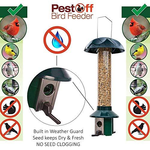 Roamwild PestOff Squirrel Proof Bird Feeder Mixed Seed Sunflower Heart Version by Roamwild (Image #3)