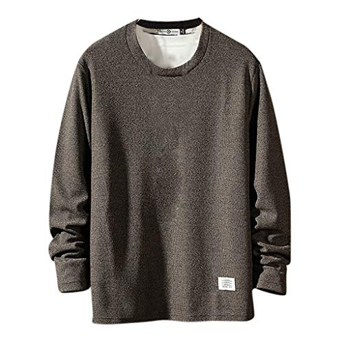 Sunhusing Men's Autumn New Casual Style Solid Color Round Neck Long Sleeve Short Pullover Sweatshirt T-Shirt Coffee (Best Fish And Ski Boats)