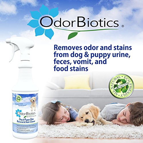 OdorBiotics Pet Stain & Odor Remover for Dog Beds, Playpens, Crates, Carriers, Kennels, Clothes, Puppy Toys, Eliminate Urine Smell on Carpet, Rugs, Hardwood Floors, Sofa Fabric, 128 oz Economy Size by OdorBiotics (Image #5)