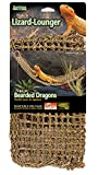 Penn Plax Lizard Lounger, 100% Natural Seagrass Fibers for Anoles, Bearded Dragons, Geckos, Iguanas, and Hermit Crabs Rectangular 7 x 29 Inches