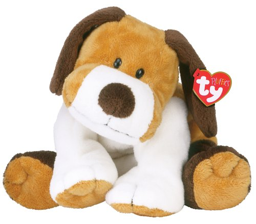 WHIFFER - dog