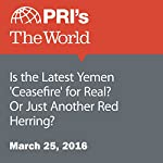 Is the Latest Yemen 'Ceasefire' for Real? Or Just Another Red Herring? | Stephen Snyder