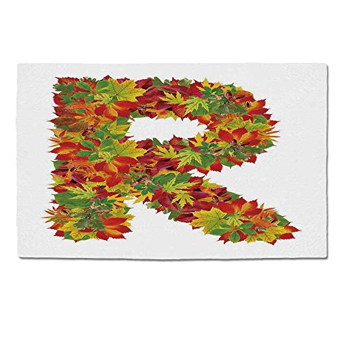 YOLIYANA Letter R Durable Door Mat,Floral R Made with Maple Leaves Bouquet Essence Autumn Inspirations Initials Theme Decorative for Home Office,One Size ()