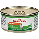 Best Royal Canin Dog Food For Small Dogs - Royal Canin Adult Beauty Canned Dog Food, 5.8-Ounce Review