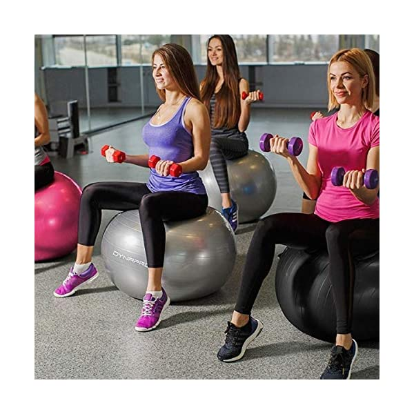 Gym Core Strength Fitness DYNAPRO Exercise Ball 2,000 lbs Stability Ball Balance Professional ...