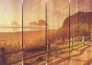 Gizaun Art Coastal Stroll Inside/Outside Wall Art, a todo color en cedro