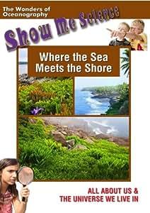 Where the Sea Meets the Shore