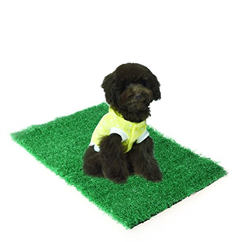 CHBC Dog Potty Grass, Synthetic Grass Pee Pad For Pet Cat Puppy Restroom