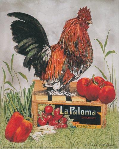 Rooster Wall Decor Country Chicken Condo La Paloma Art Print Poster (16x20)