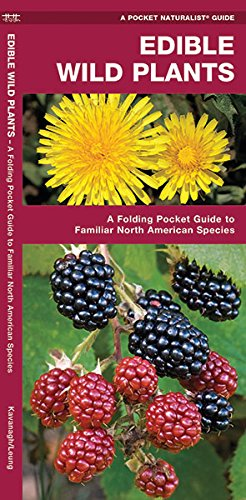 Edible Wild Plants: A Folding Pocket Guide to Familiar North American Species (A Pocket Naturalist Guide)