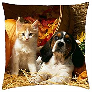 Friends Forever - Throw Pillow Cover Case (18
