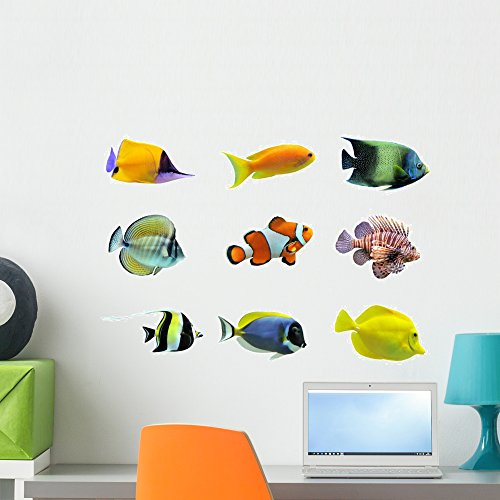 (Wallmonkeys Nine Tropical Fish Wall Decal Sticker Set Individual Peel and Stick Graphics on a (24 in W x 18 in H) Sticker Sheet WM53070)