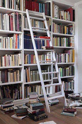 Librerie Con Scala Scorrevole In Legno.Bioecoshop Scala Da Appoggio In Legno Di Faggio Massello A 10 Gradini Con Kit Per Montaggio Bioeco Df Up Mis 44 X 8 Cm Altezza 250 Cm Tinta Naturale
