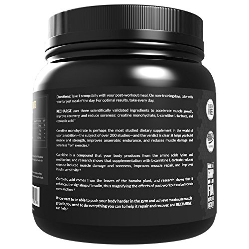Legion Recharge Best Post Workout Supplement