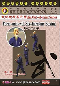 Form-and-will Six-harmony Boxing