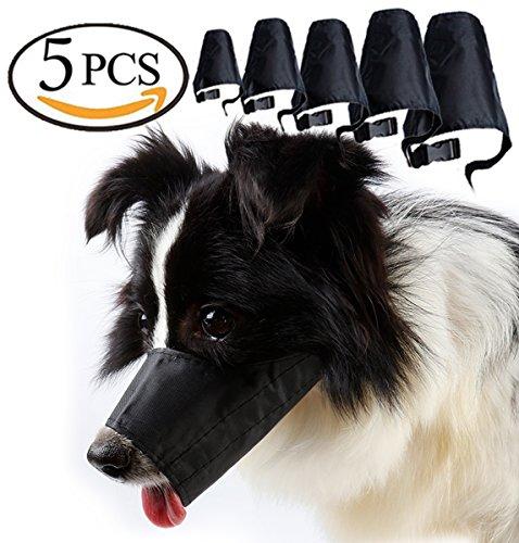 Nice set of muzzles