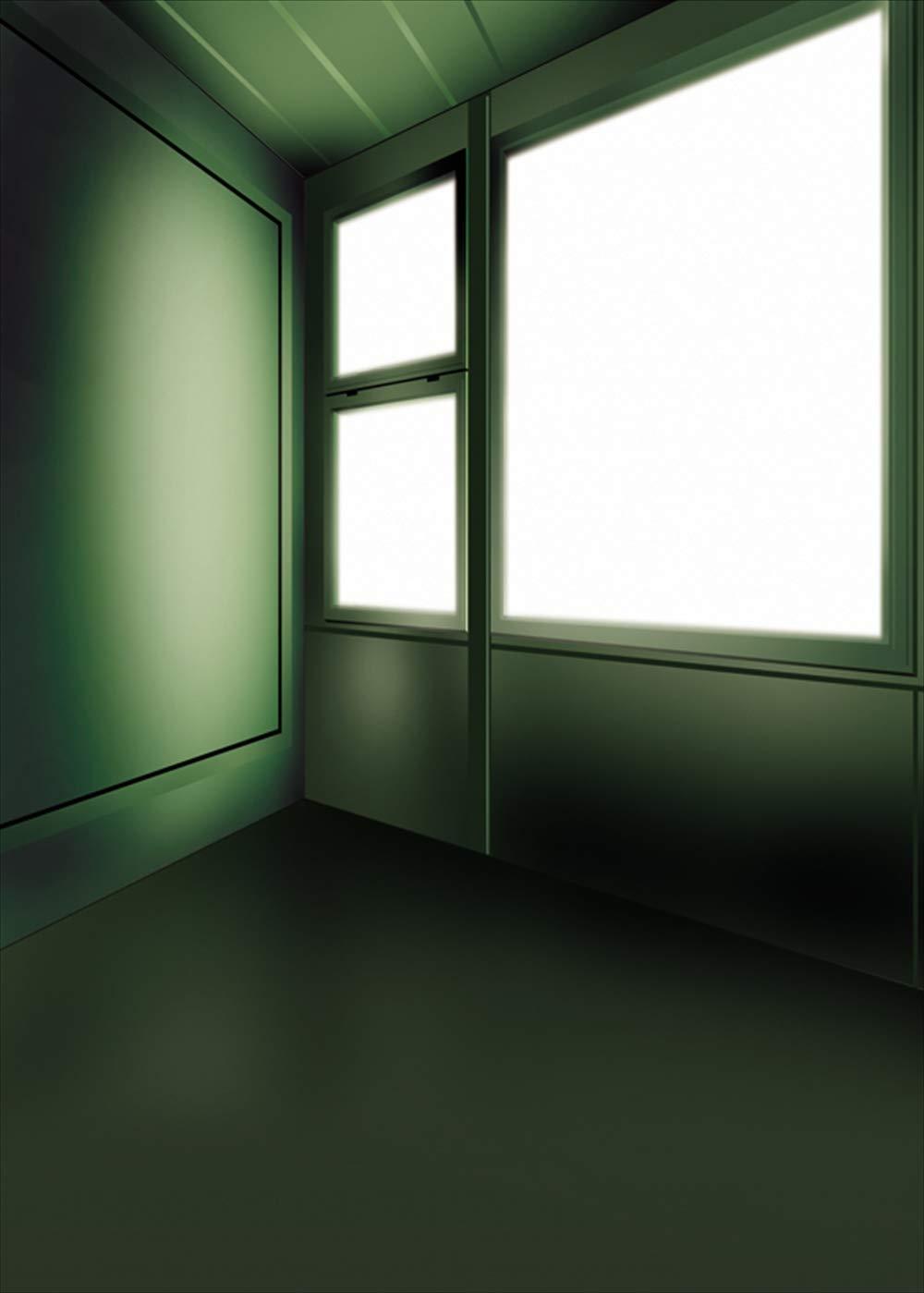 y-4525 大人サイズ撮影用背景布(幅3m x 高さ6m)   B07PNK8JRS