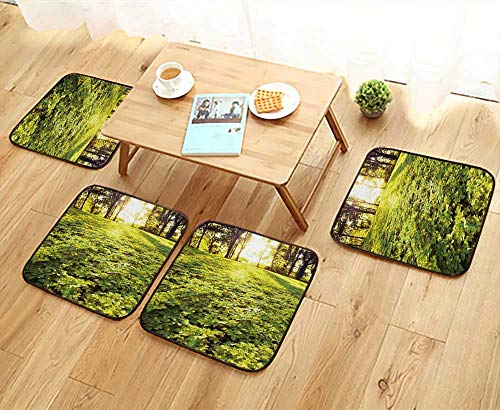 (UHOO2018 Fillet Chair Cushion an of Forest in The Morn with Sunrays Suitable for The Chair W13.5 x L13.5/4PCS Set)