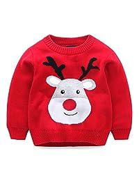 LittleSpring Little Boys Sweater Cartoon Animal