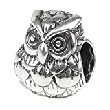 Beads Hunter 925 Sterling Silver Charm Bead Animals Duck Dog Bird Ladybug Fit European Bracelet Snake Chain (Wise Owl)