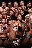 WWE - Group 13 Poster Print (24 x 36)