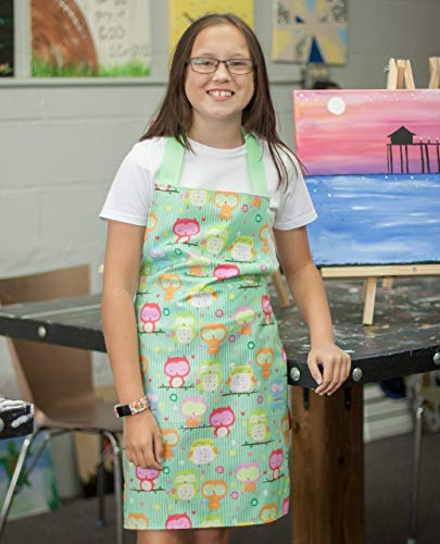 Handmade Pink and Green Owls Art or Kitchen Apron Gift for Tween Girl ()