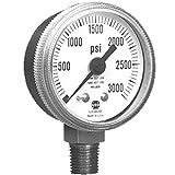 Ametek US Gauge Series P1535 2.5'' Dial Gauge 110794A